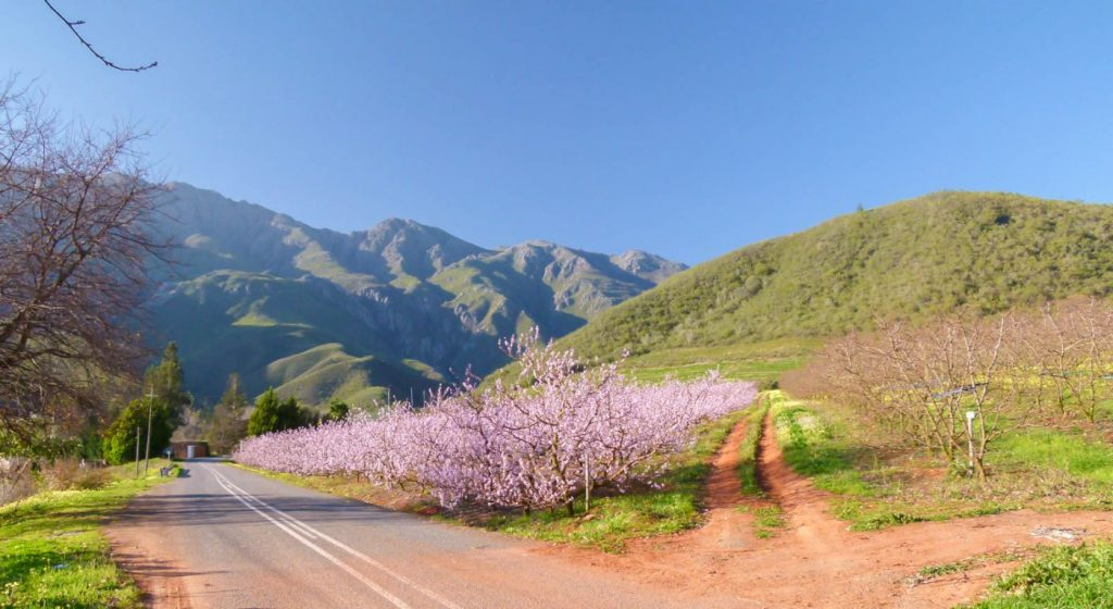 Safety-Tips-For-A-South-African-Road-Trip.jpg
